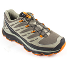 Кроссовки мужские Salomon Synapse, Swamp/Dark Titanium